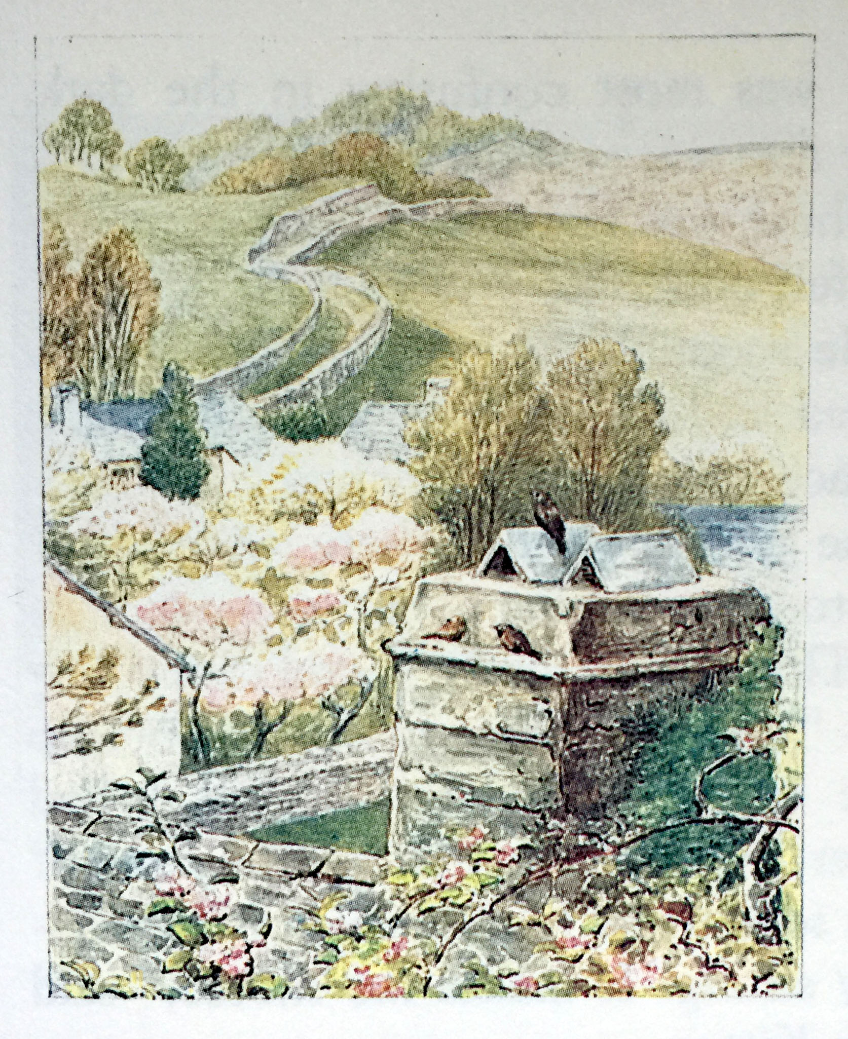 """""""Think of the maintenance of the outbuildings! Could I learn to prune the fruit trees myself, or would I need to hire a service?"""" My adult self now asks. """"The cable is buried, right? A dish would look so tacky against the stonework."""""""