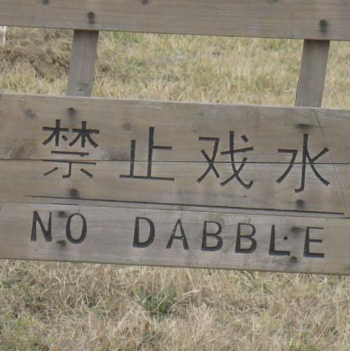 dabble.jpg