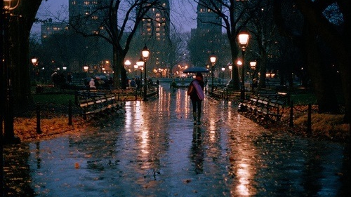 Photography: Unknown | Central Park, NYC