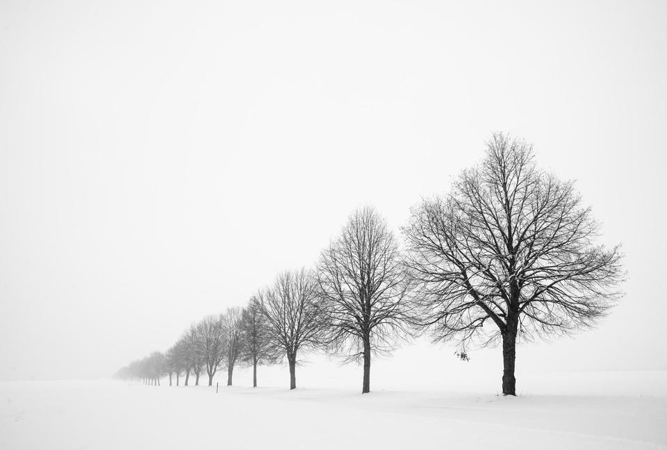 Photography: Matthias Hauser