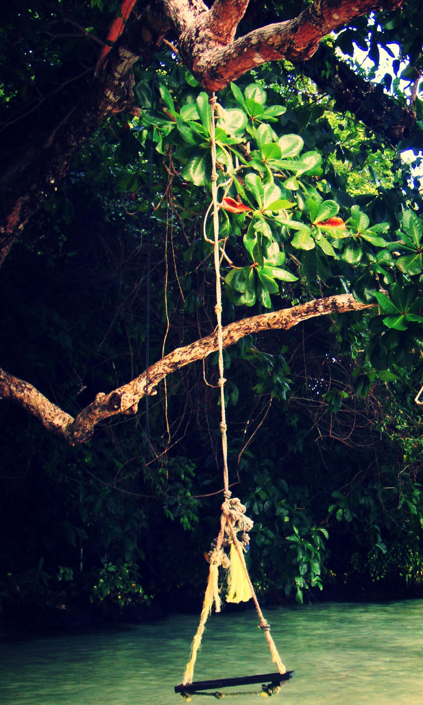 Photography: tM | Jamaica, Frenchman's Cove