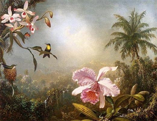 Artist: Martin Johnson Heade | The Orchids Nesting Hummingbirds and a Butterfly