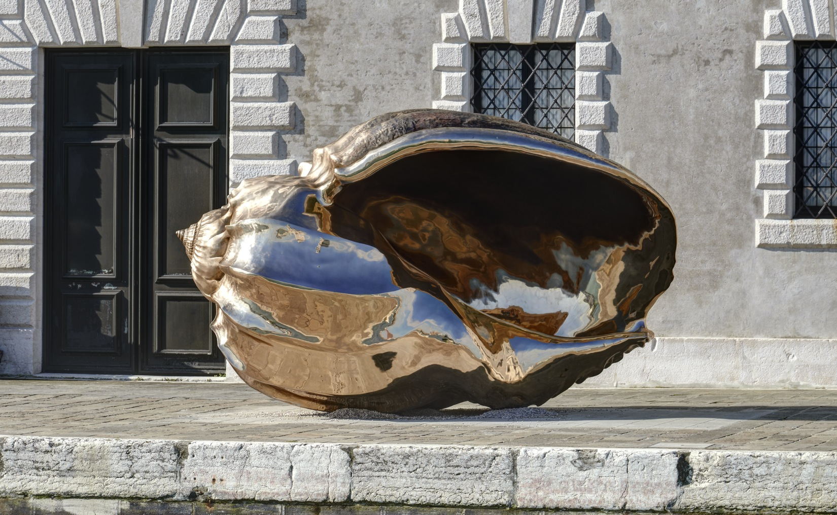 Sprial of the Galaxy Conch Shell by MArc Quinn.jpg