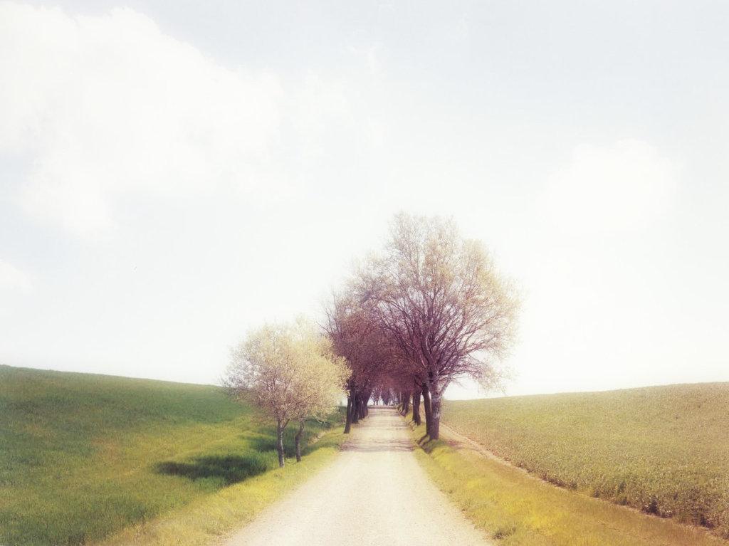 tuscany___joel_meyerowitz__rendered__by_monoivan-d8duica.jpg