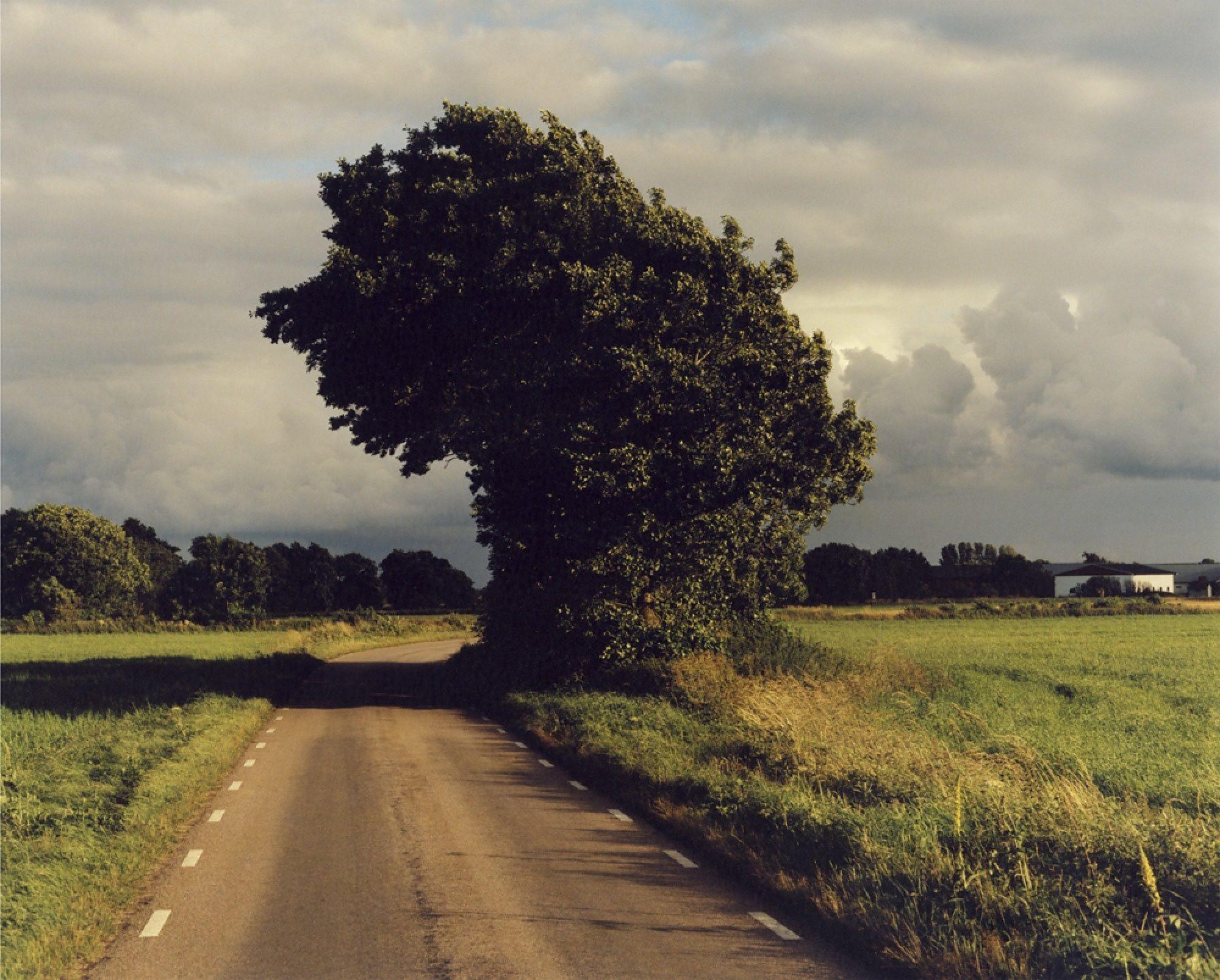 jamie-hawkesworth-a-short-pleasurable-journey-work16_2000w.jpg