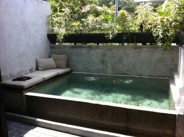 Compact Plunge ideas for the backyard.jpg