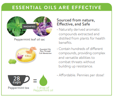 what are essential oils.png
