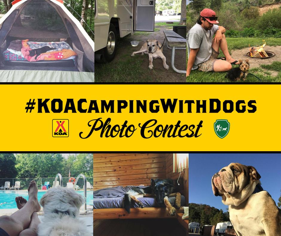 koacampingwithdogs-photo-contest-facebook-graphic_28678045971_o.png