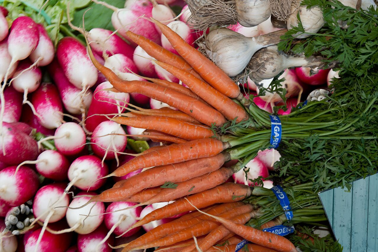 radishesdancedcarrots.jpg