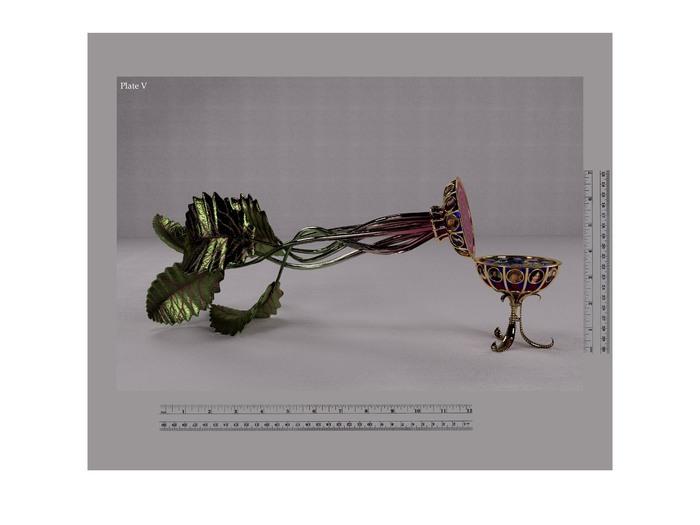 "Bill Rybak - ""Plate IV, Chioggia Beet"" - $475"