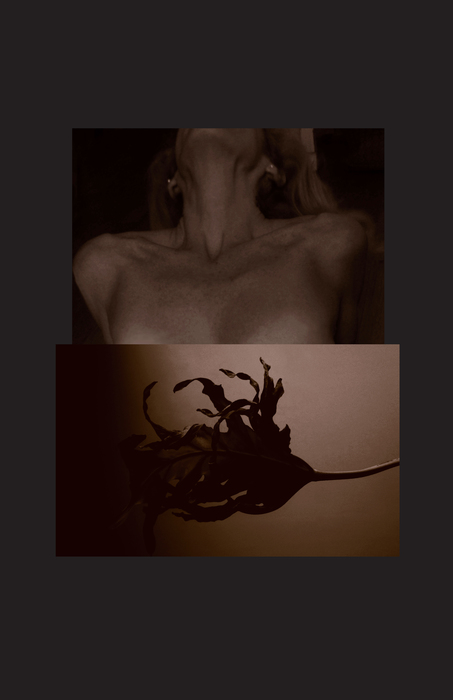 "Jay Young Gerard-  ""Dancing Still: Self-Portrait #4""   (11""x17"") -$425"