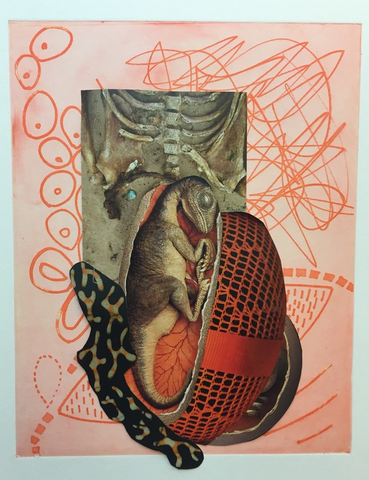 "Judy Gould -   Embryology   -Mixed Media Collage (19"" x 13"")  $425"
