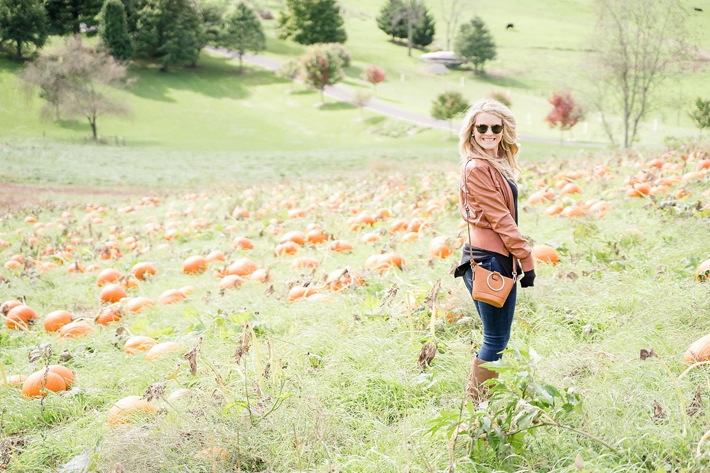 pumpkin-patch-blacksburg-va_0142.jpg