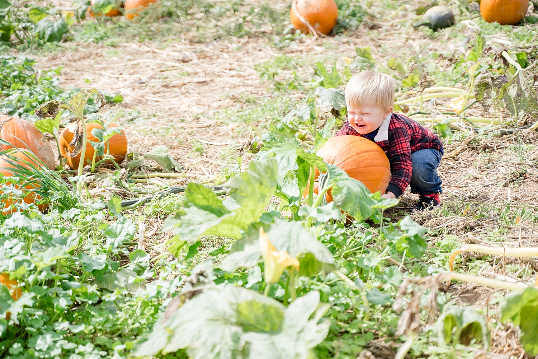 pumpkin-patch-blacksburg-va_0148.jpg