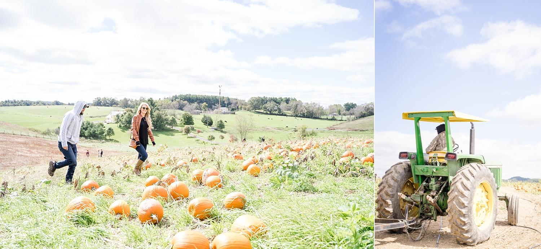 pumpkin-patch-blacksburg-va_0149.jpg