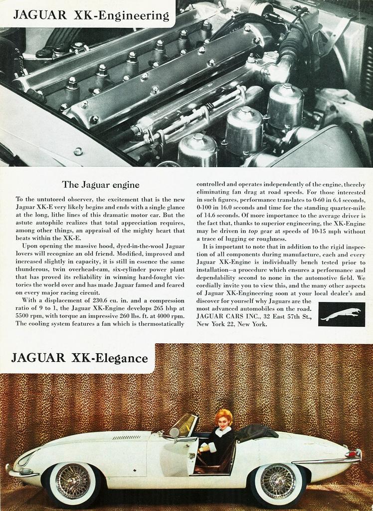 TunnelRam_Jaguar (15).jpg