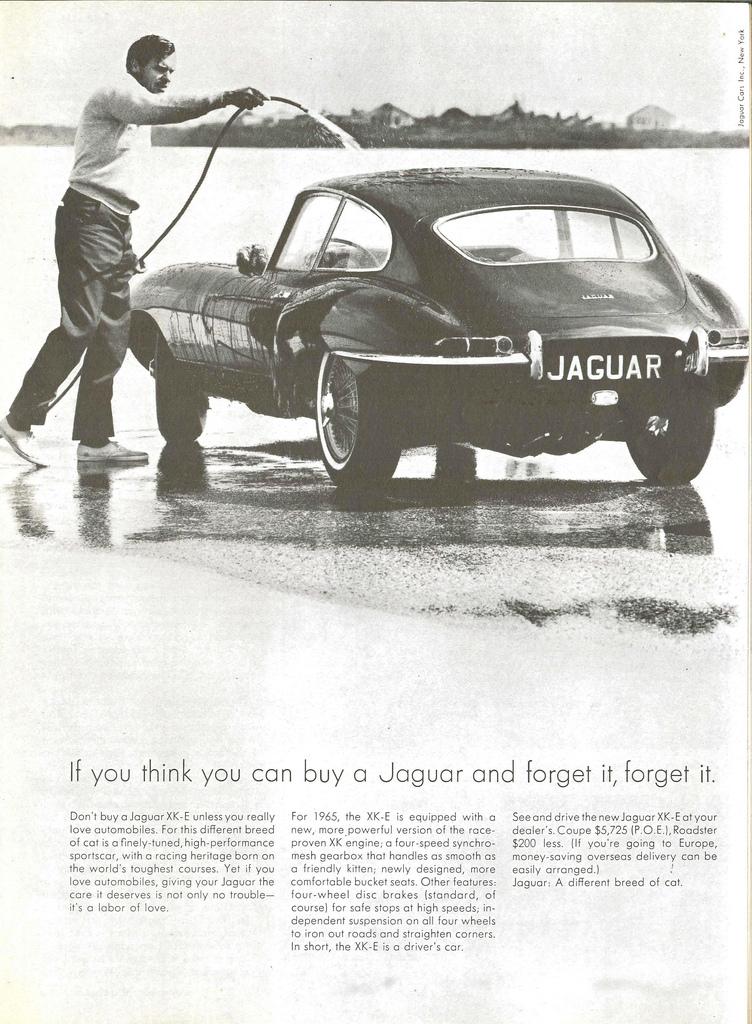 TunnelRam_Jaguar (18).jpg