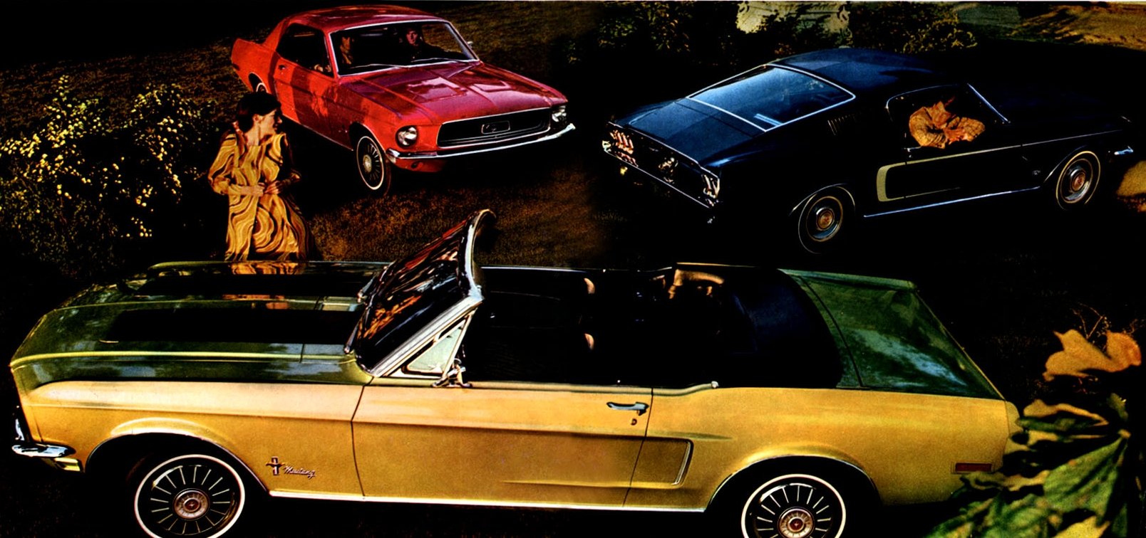 Mustangs for 1967