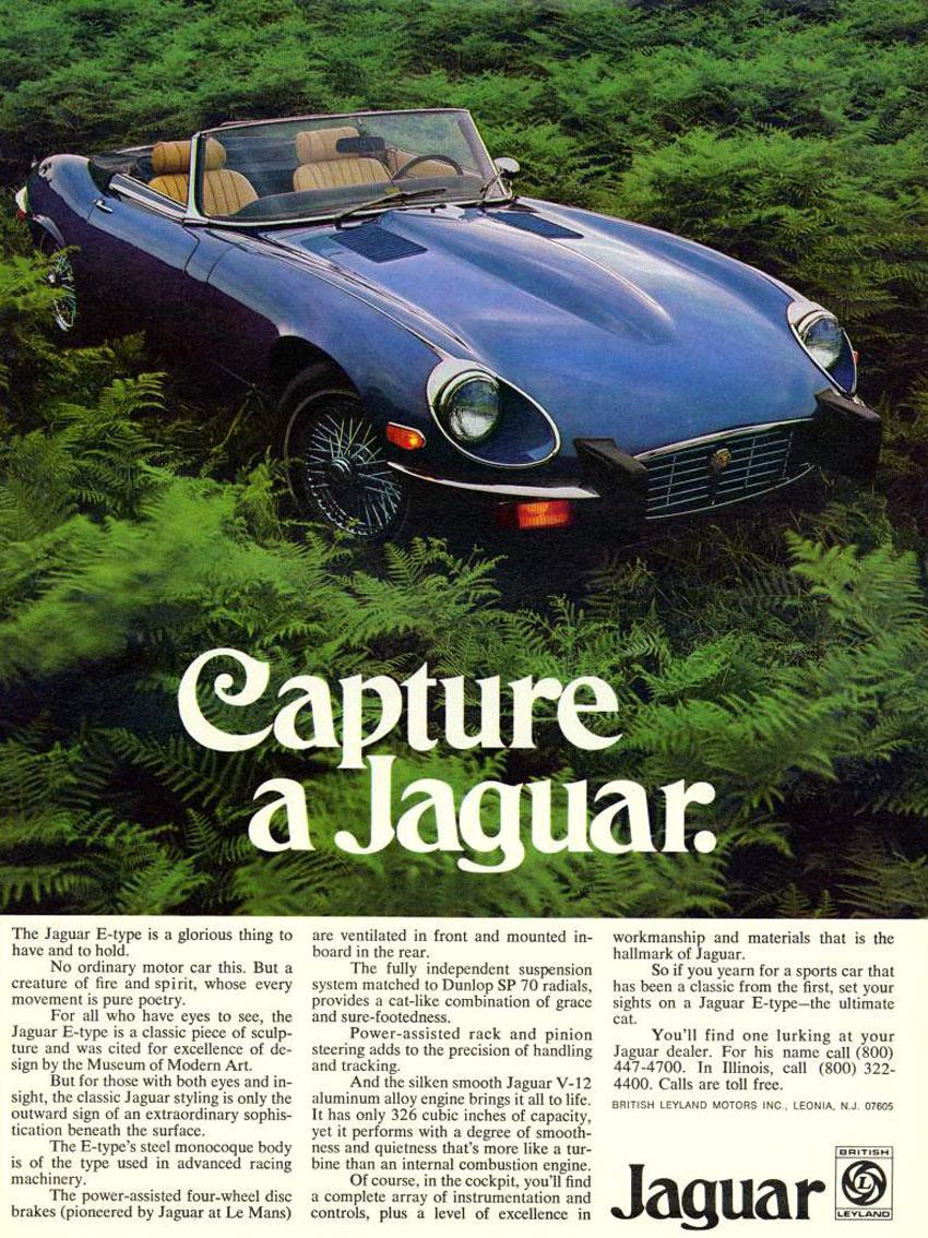 tunnelram.net_Jaguar xk-e V12 (19).jpg