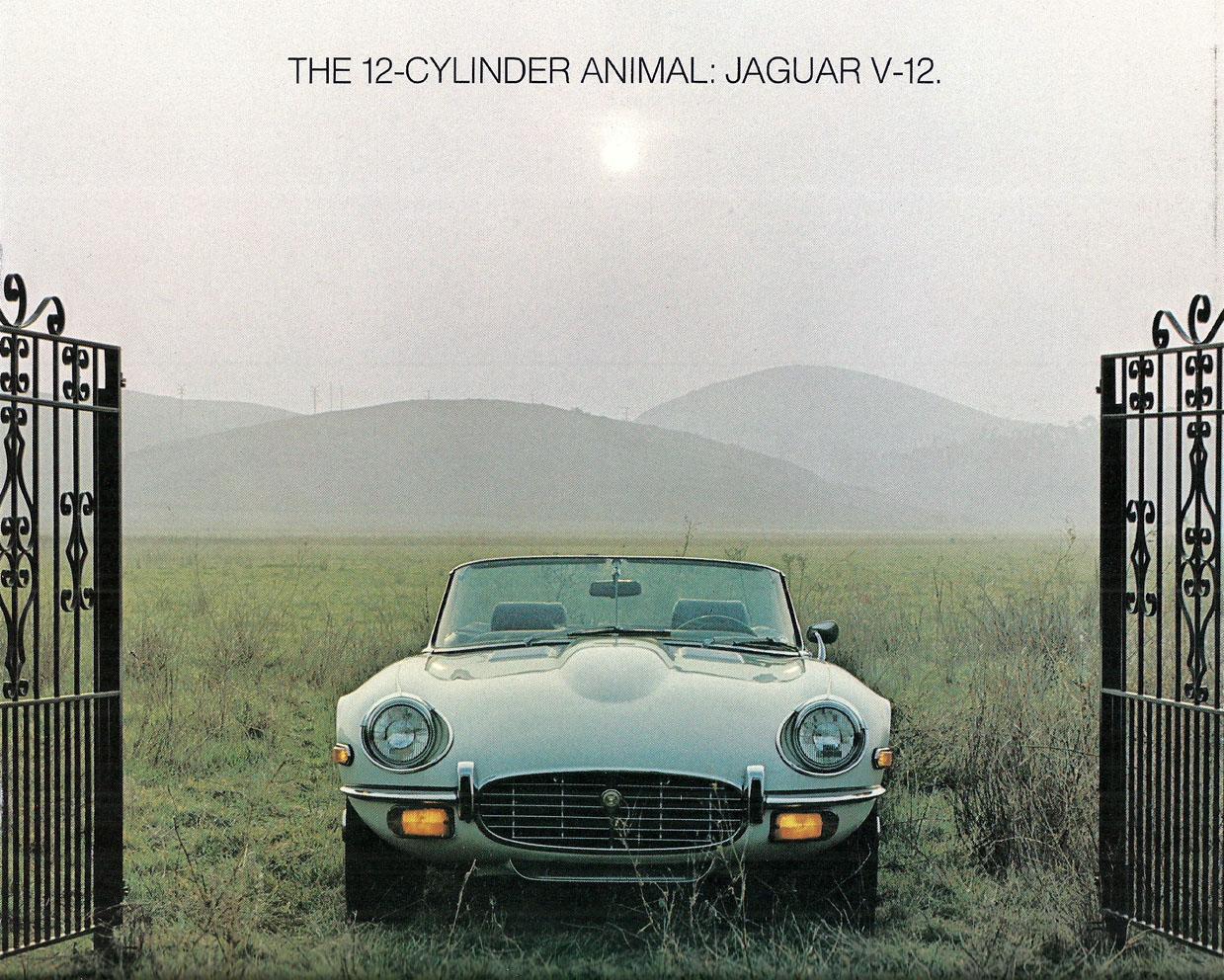 tunnelram.net_Jaguar xk-e V12 (24).jpg