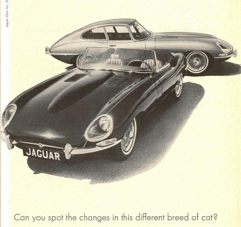 TunnelRam_Jaguar (17).jpg