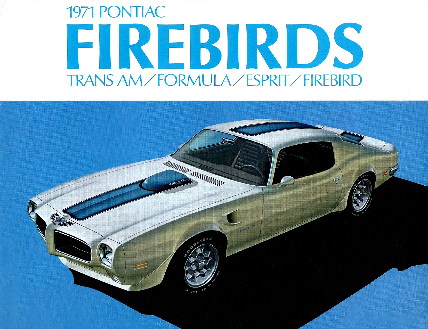 tunnelram.net_pontiac firebird and trans am 1970s (7).jpg
