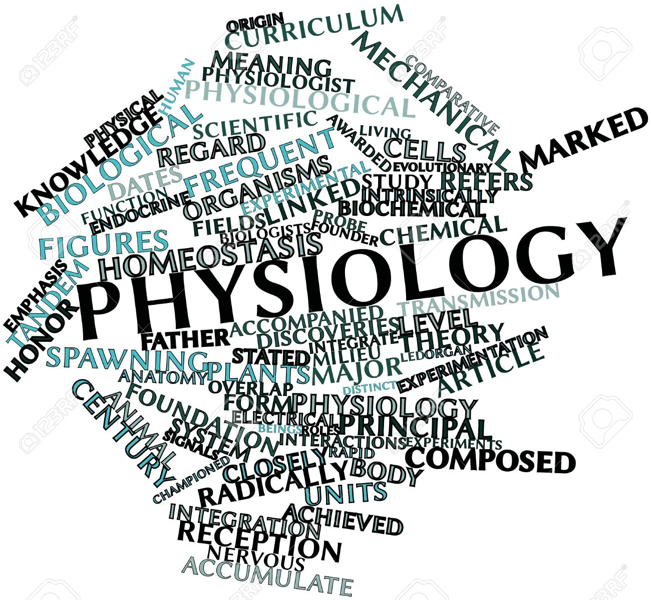 16633223-Abstract-word-cloud-for-Physiology-with-related-tags-and-terms-Stock-Photo.jpg