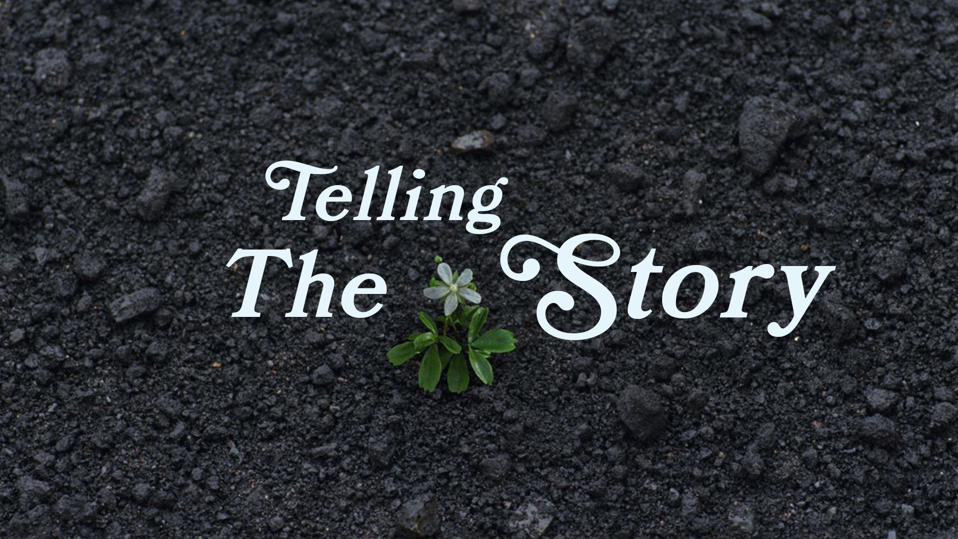 telling the story title image.jpg