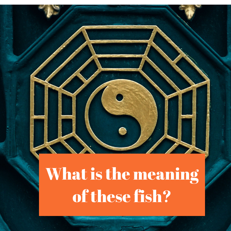 What is the meaning of these fish_.png