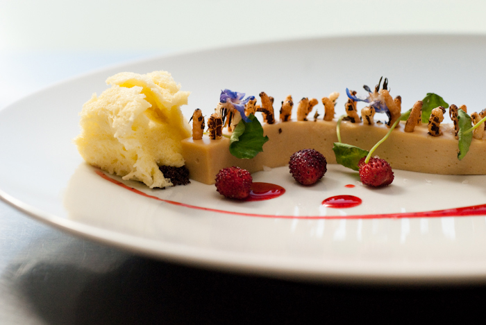 Dessert by Michael Voltaggio. He's not messin' around here. Photo credit: StarChef.com