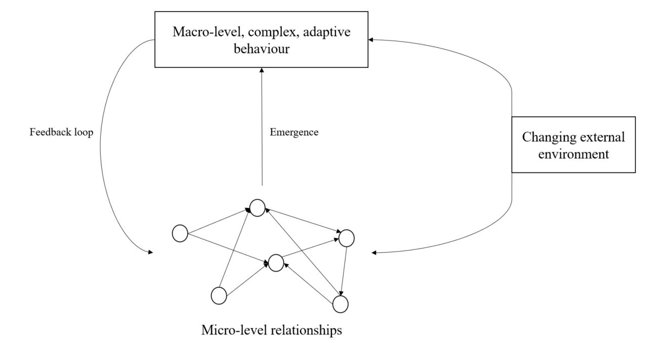 Figure 3: Complex adaptive system