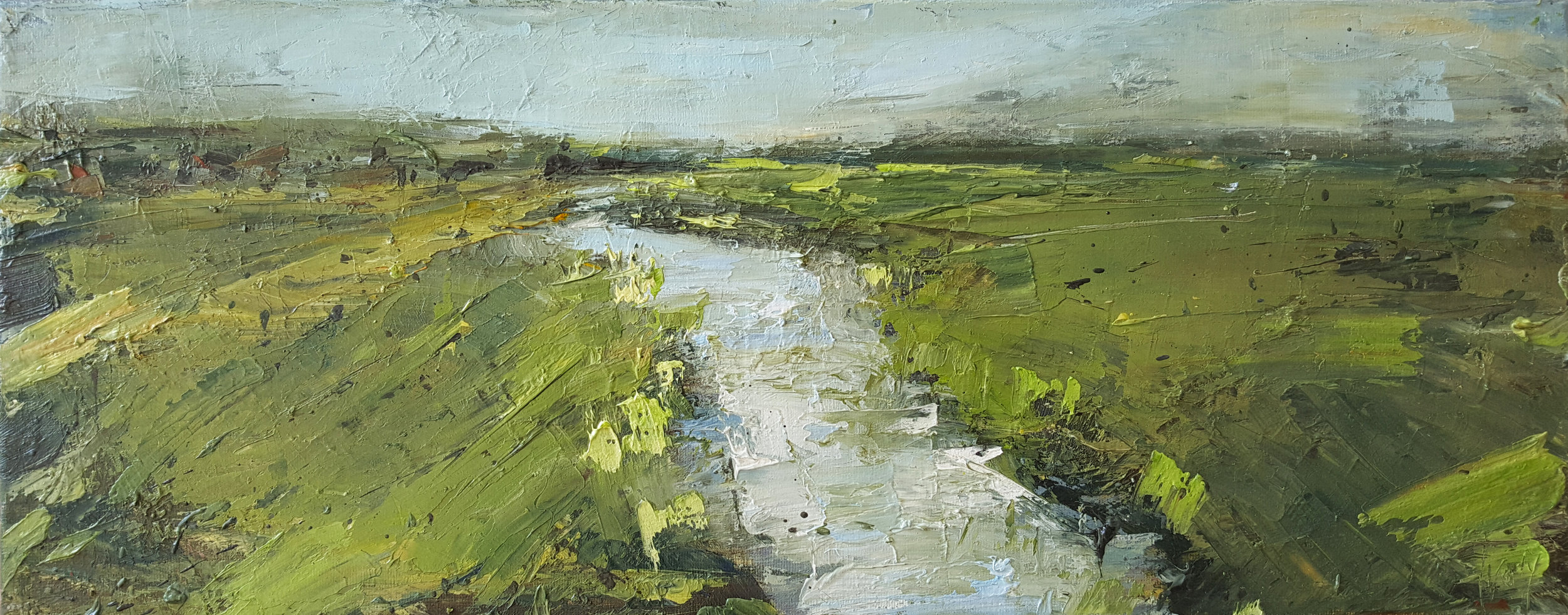 river field and sky, cornwall 20x50cm.jpg