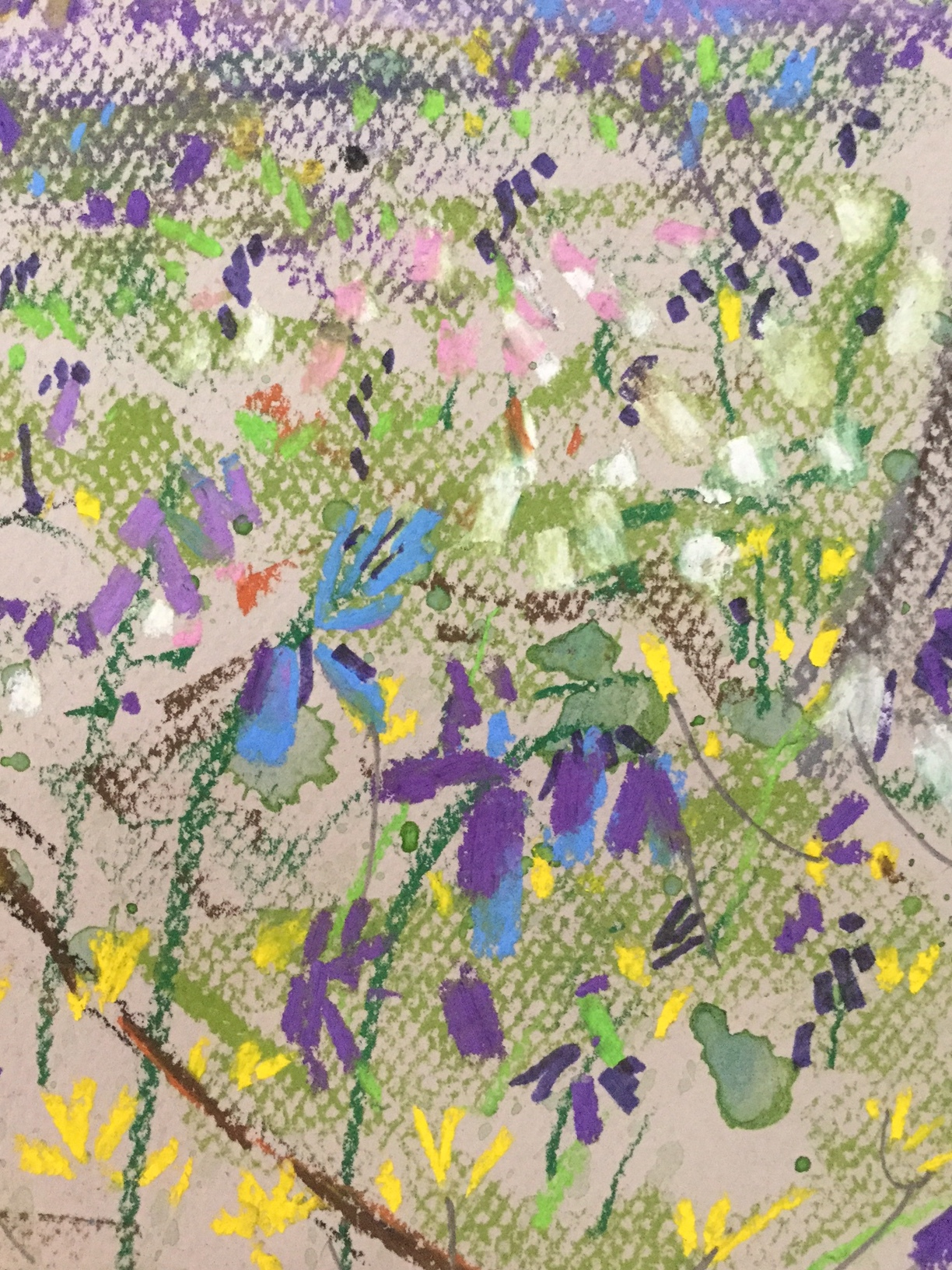Bluebells and Aconites - Jane Hindmarch