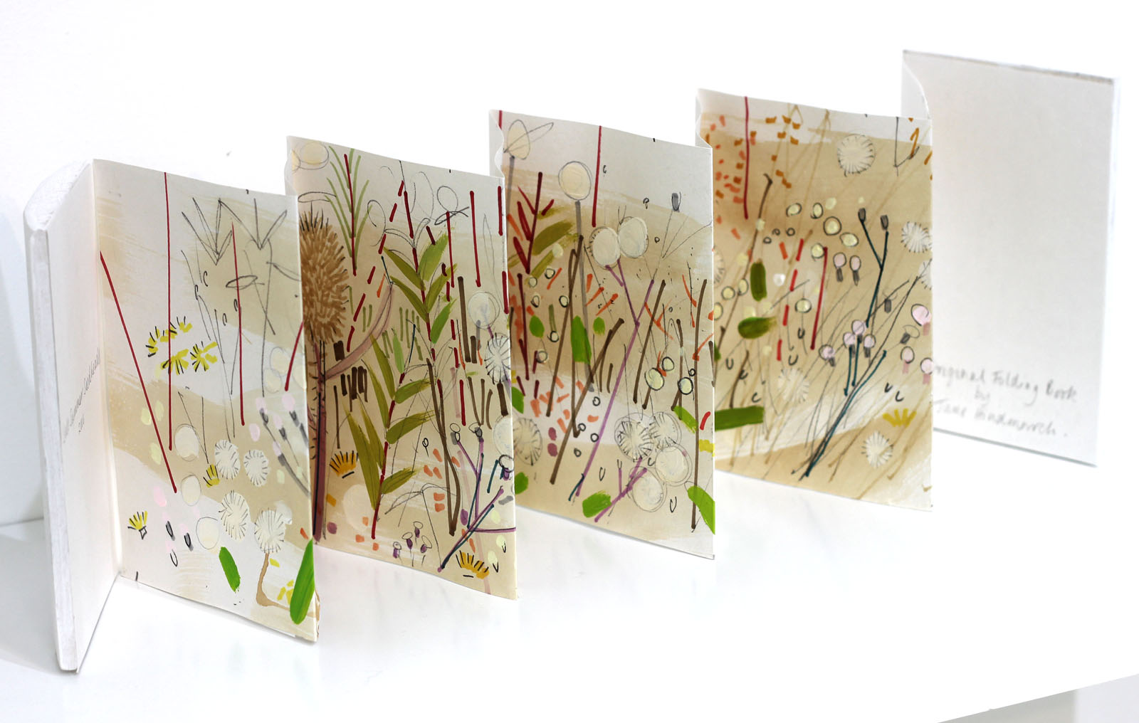 """Summer Seedheads"" 2016  Original drawing artist's book in mixed media on paper with handmade wooden cover."