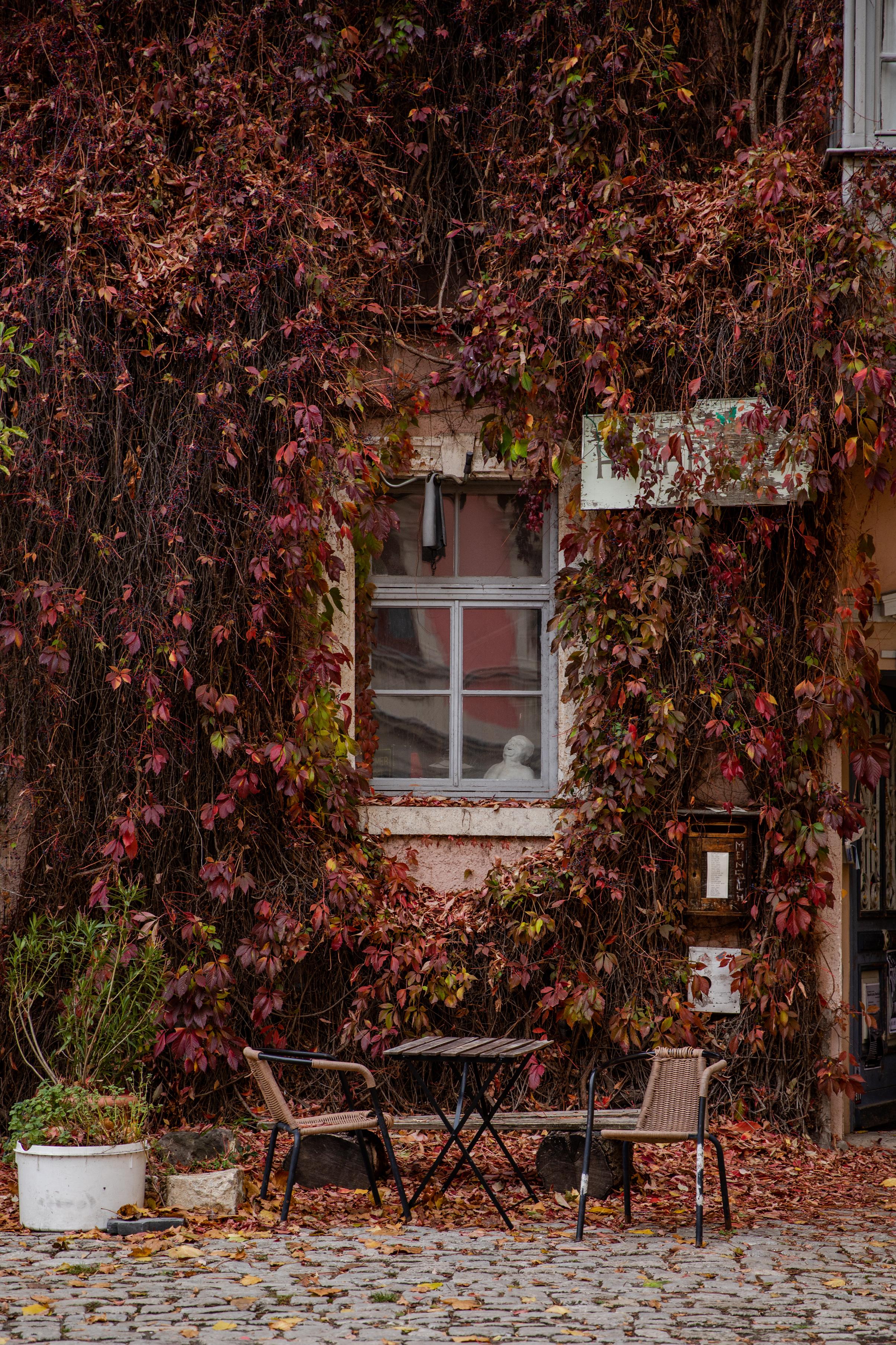 Germany-9043.jpg