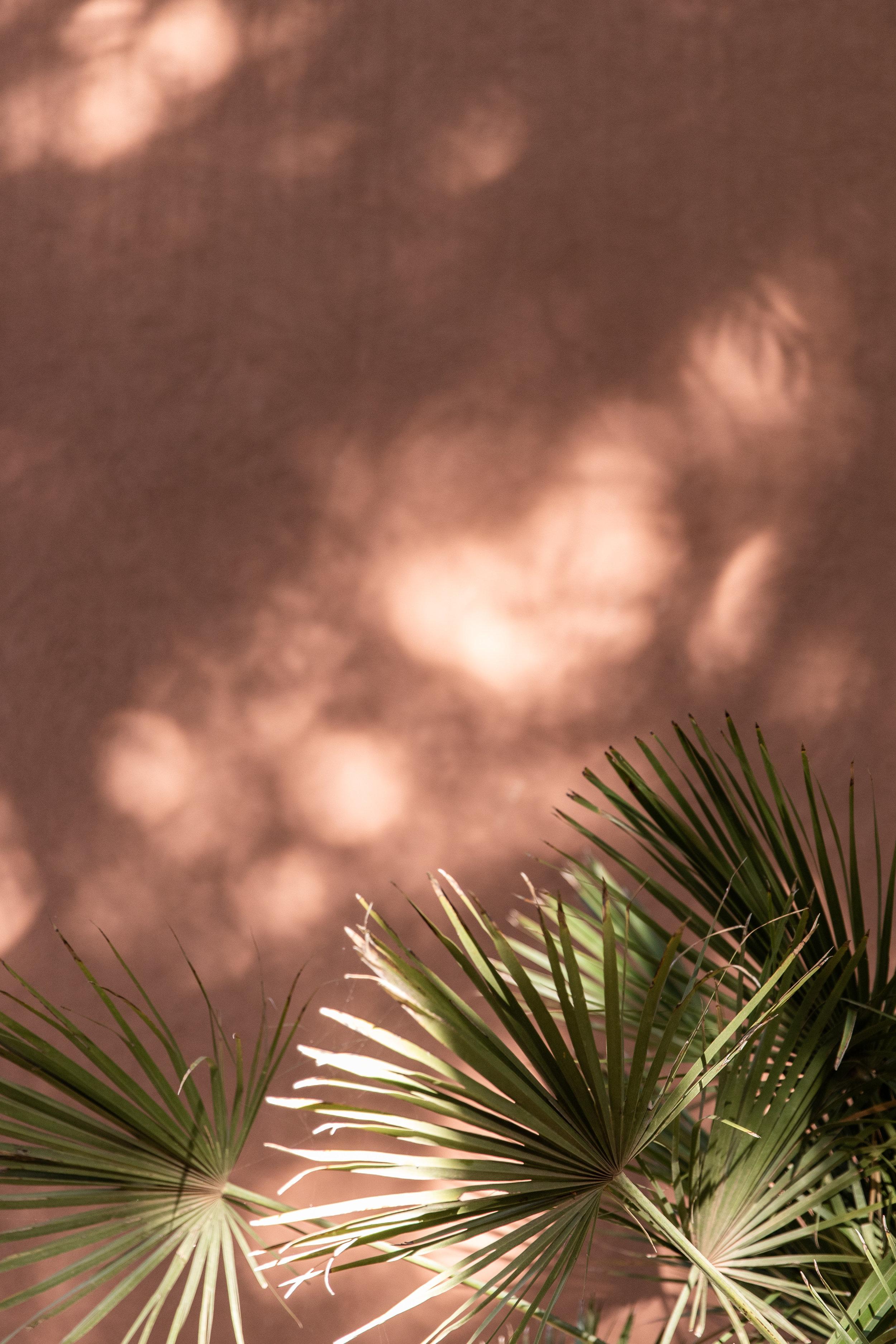 Morocco-3093.jpg