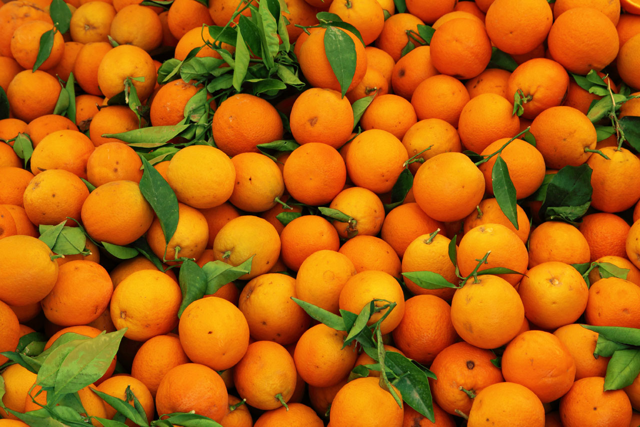photo-orange4.jpg