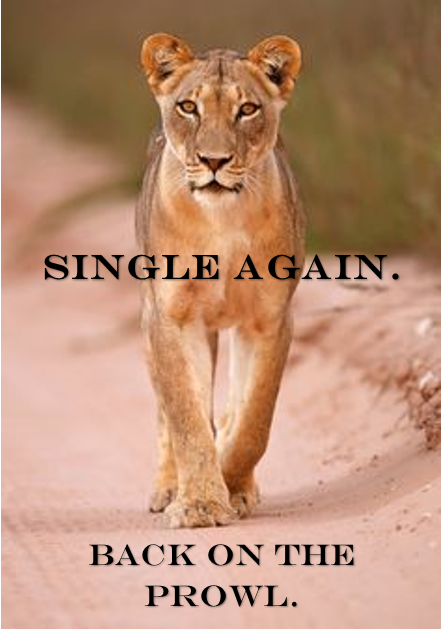 Unapologetically Single Lioness