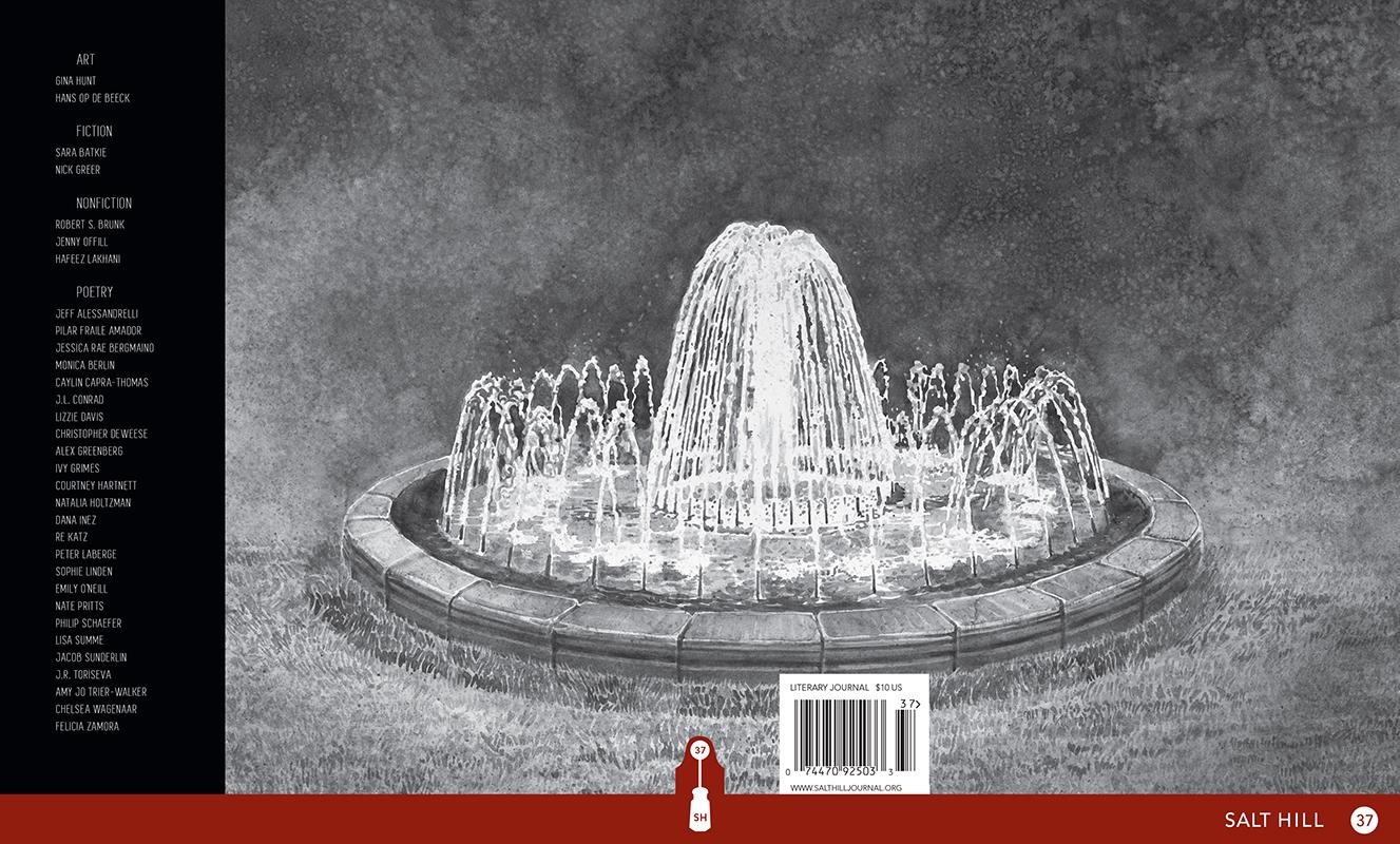 Salt Hill  37, Cover Design