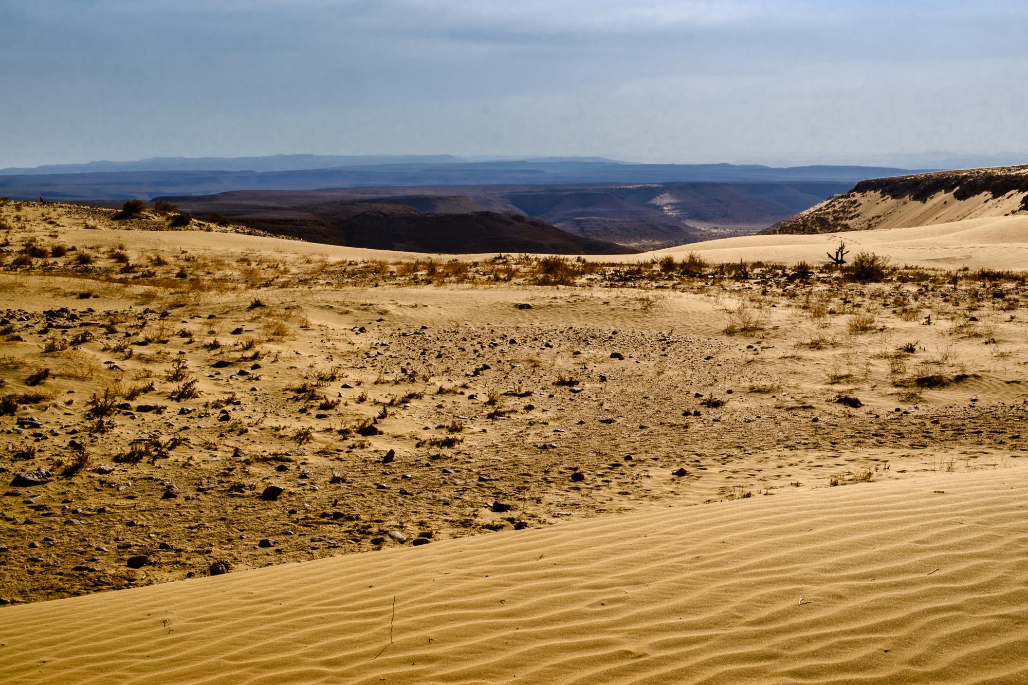 my desert site-5857.jpg