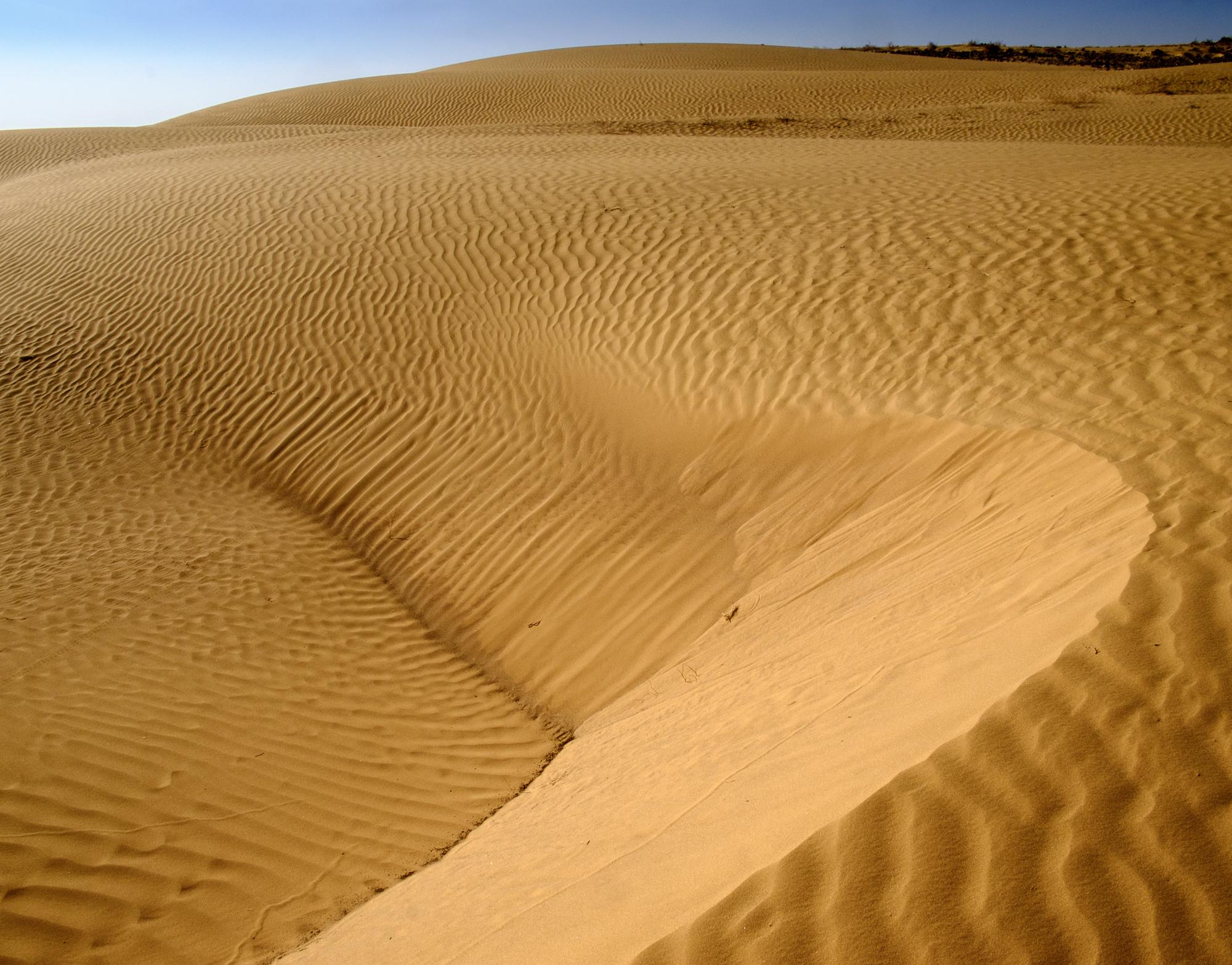 my desert site-5870.jpg