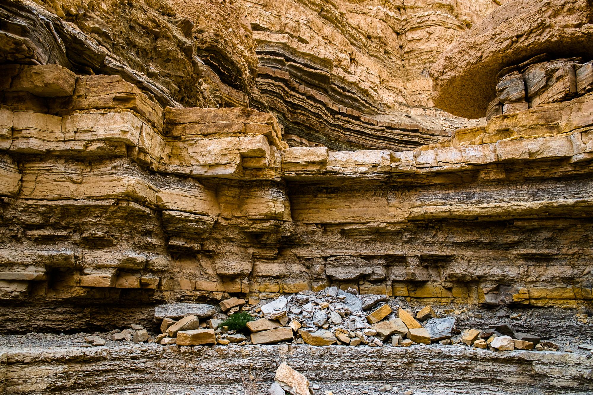 my desert site-5966.jpg