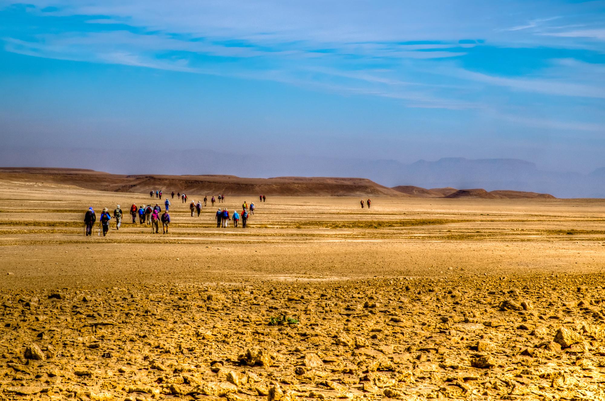 my desert site--19.jpg