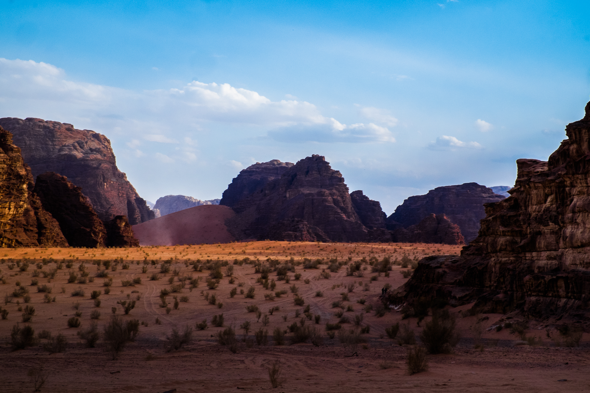 my desert site-9522.jpg