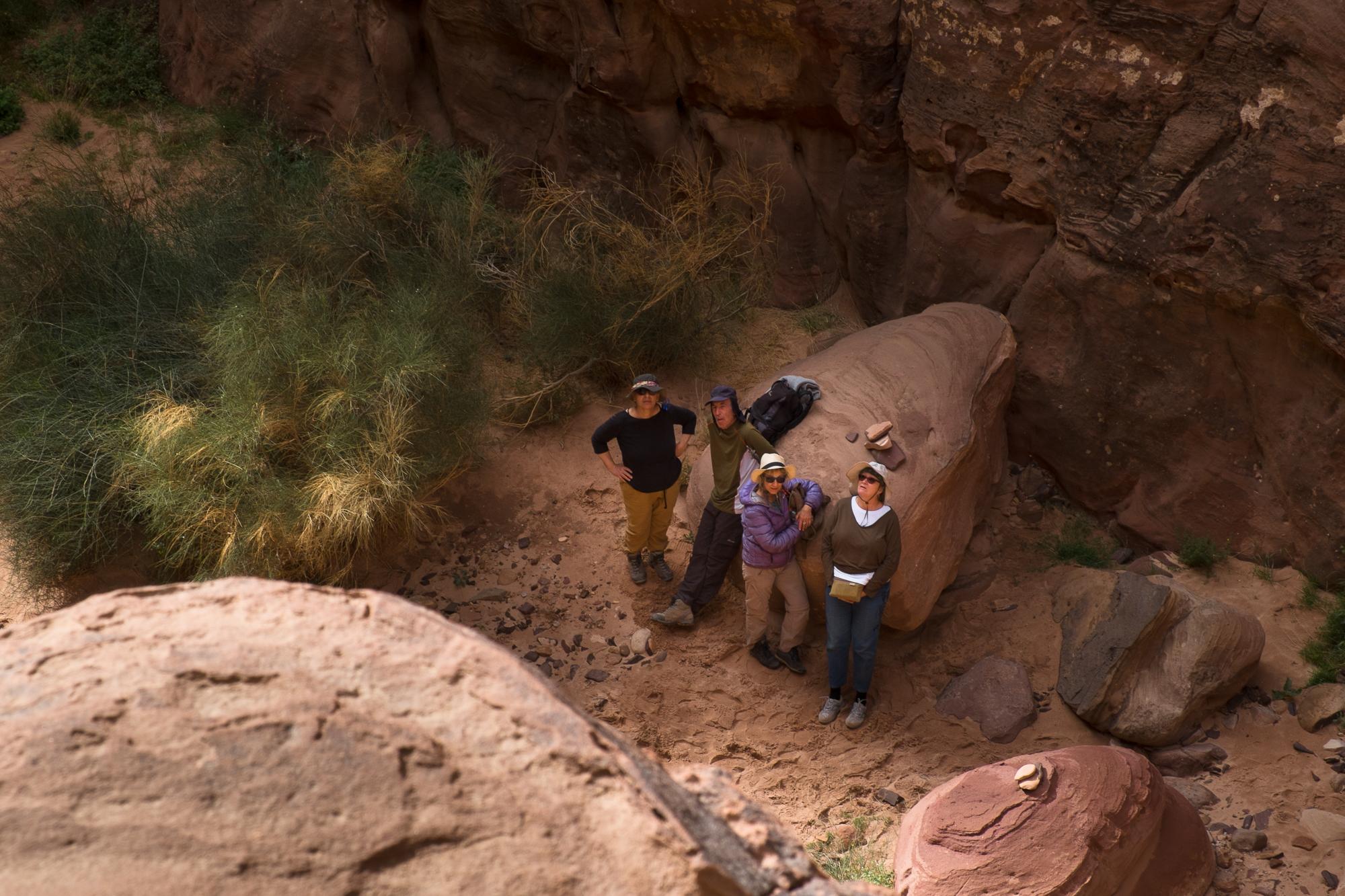 my desert site-9540.jpg