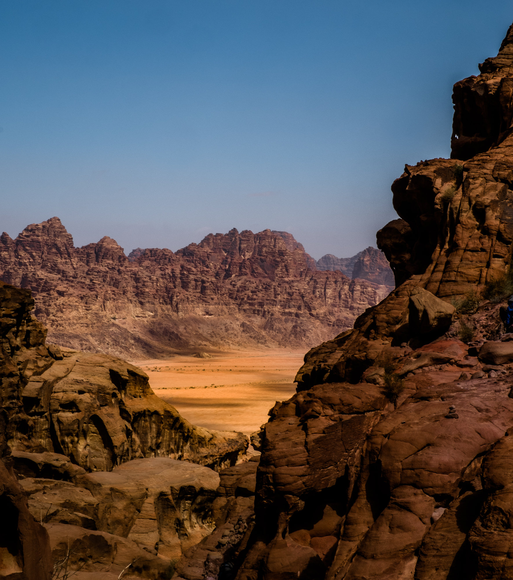 my desert site-9581.jpg