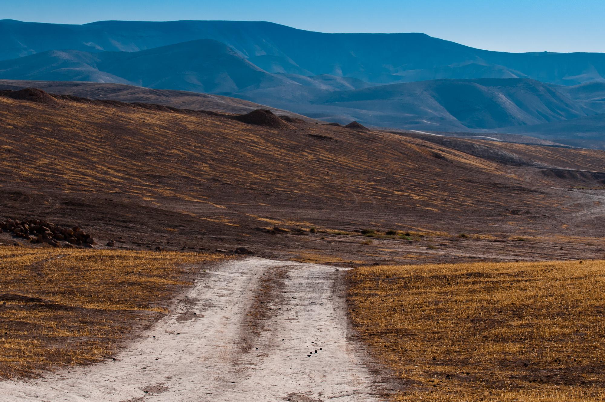 my desert site-8488.jpg