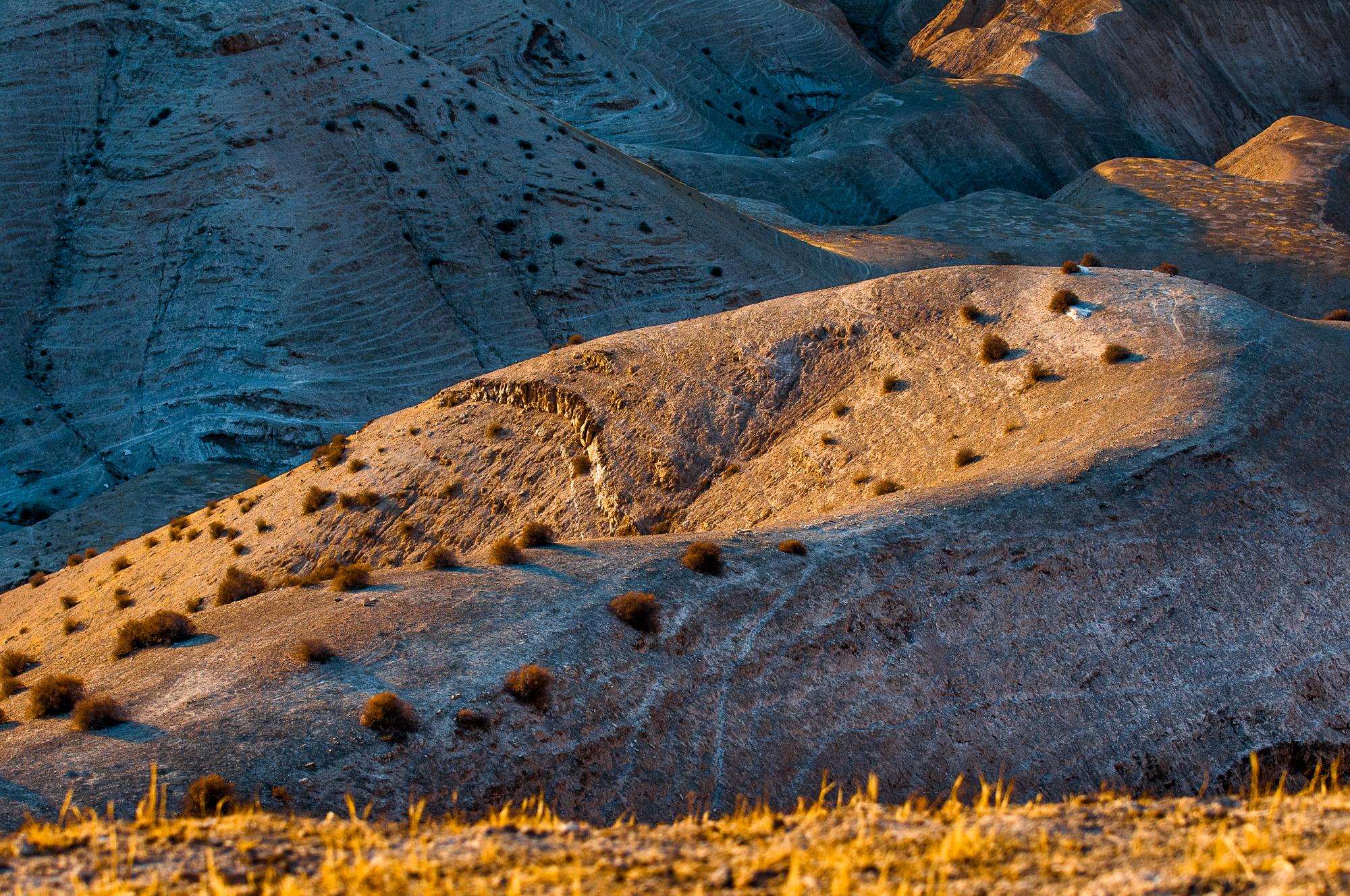 my desert site-8559.jpg