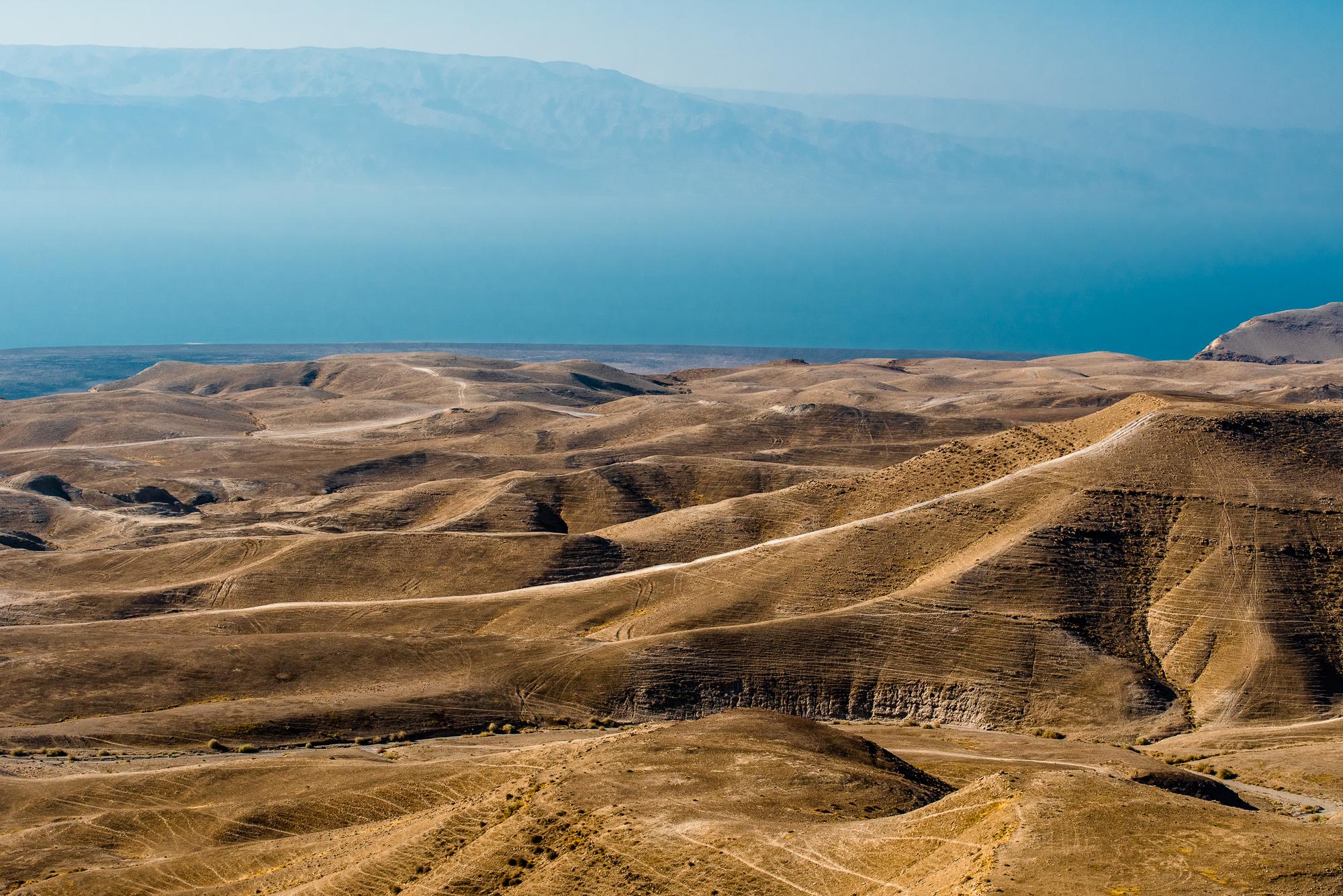 my desert site-0308.jpg