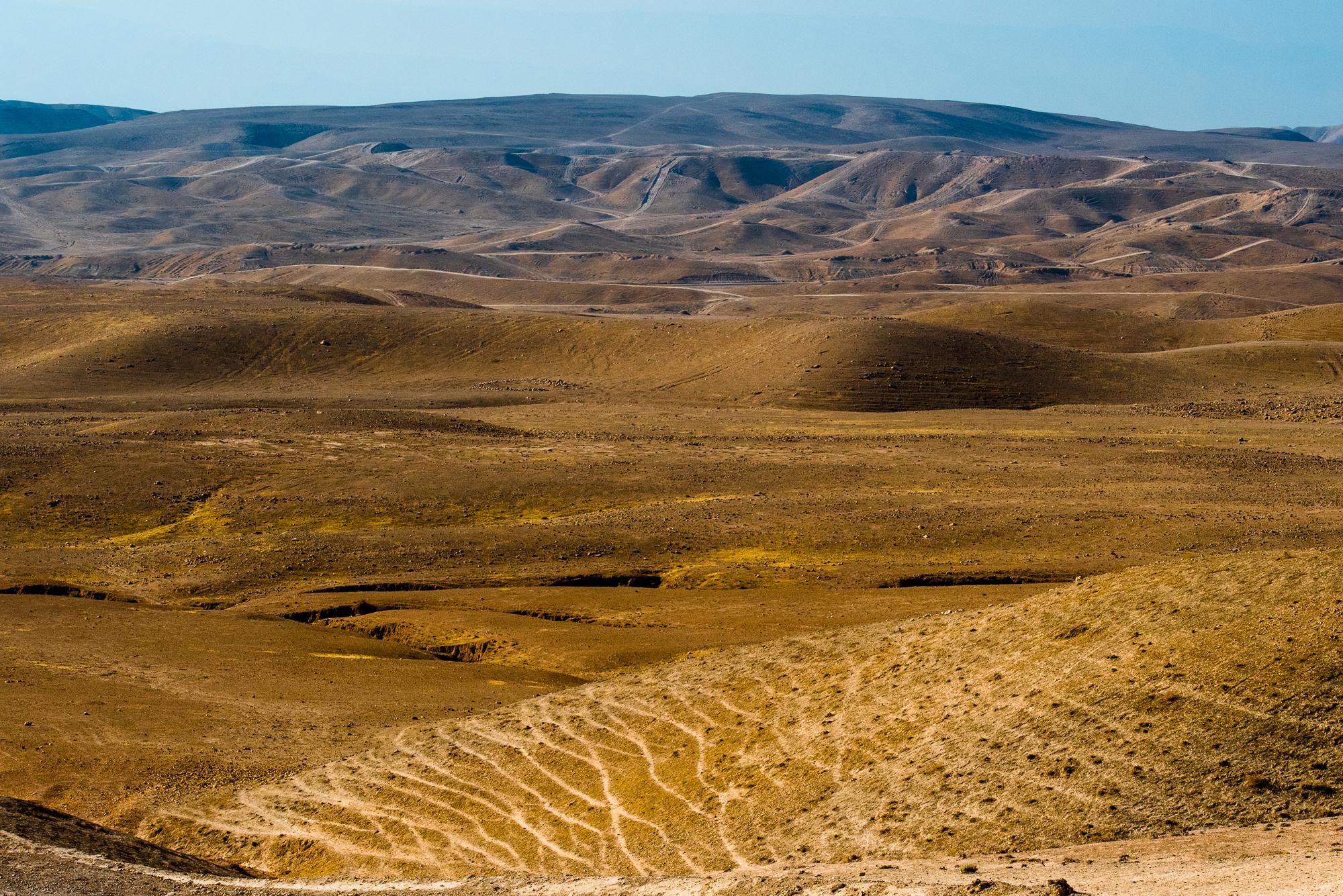 my desert site-0486.jpg